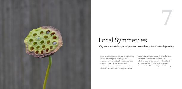 7 Local Symmetries