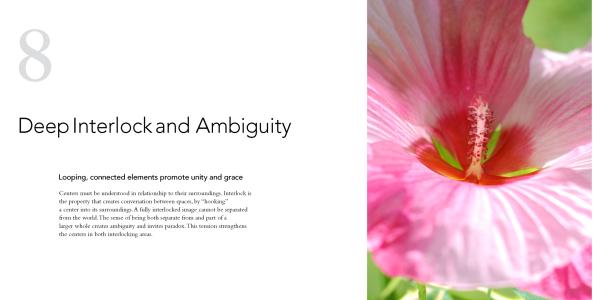 8 Deep Interlock And Ambiguity