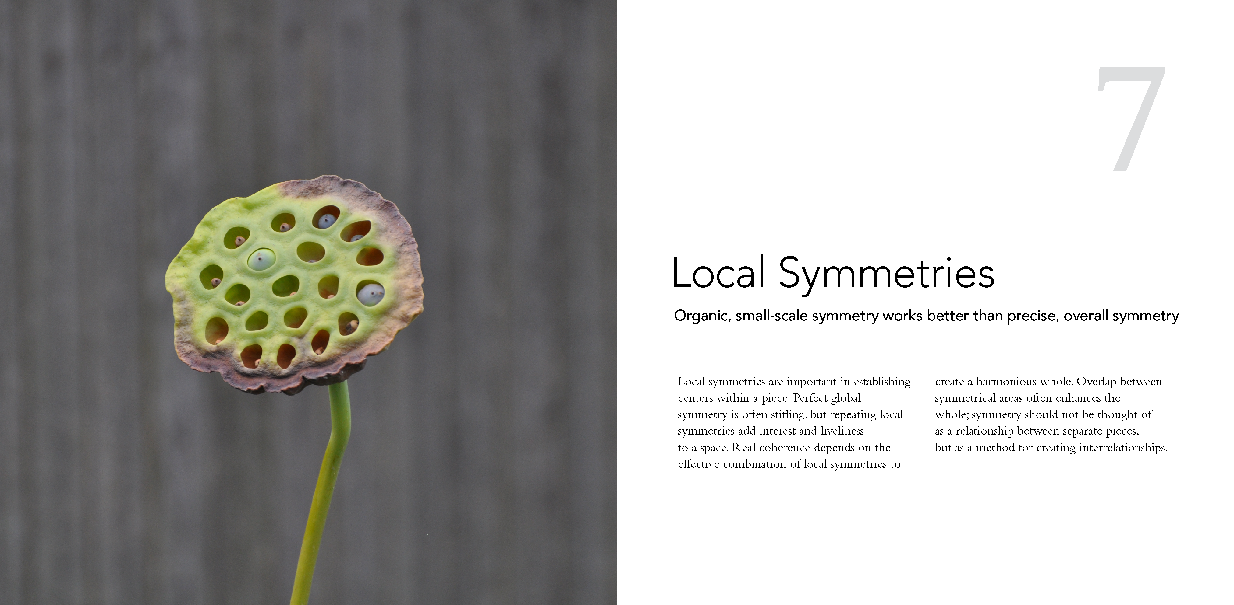 7_Local_Symmetries